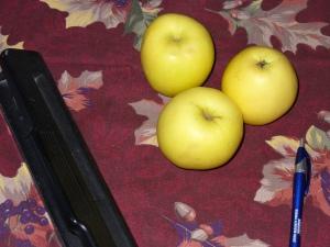 apples, hole punch, stylus
